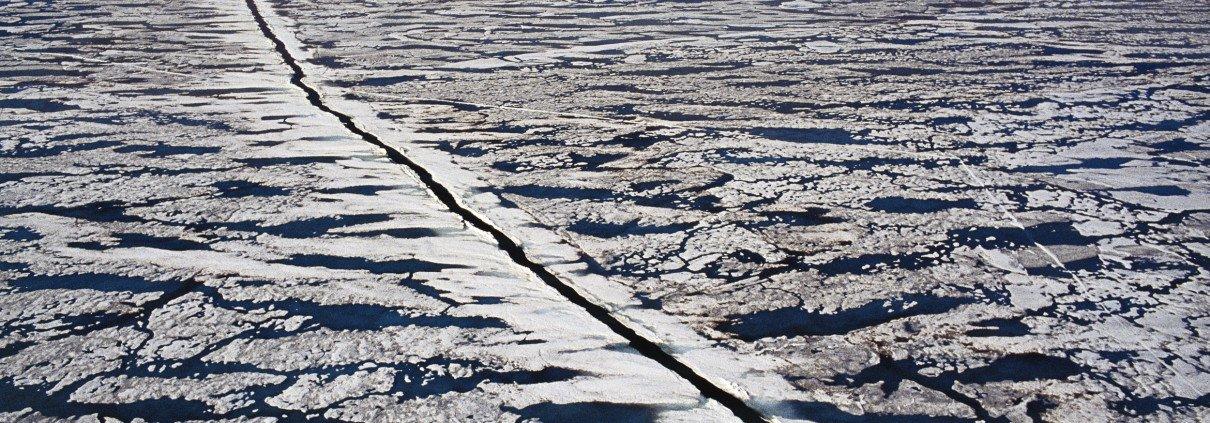 mare-artico