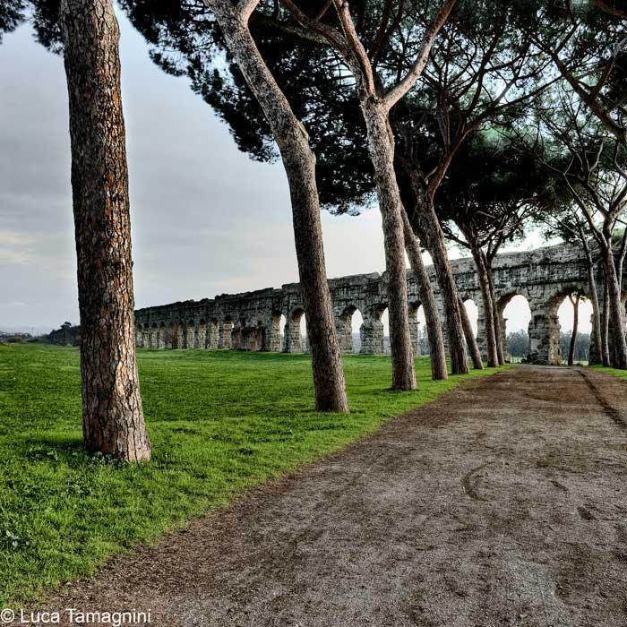 Paesaggi italiani - Roma, Parco dell'Appia Antica, 2011 - Foto di Luca TamagniniAUTORIZZAZIONE OBBLIGATORIA PER TUTTI GLI UTILIZZI. RIVOLGERSI A PHOTOATLANTE SRL