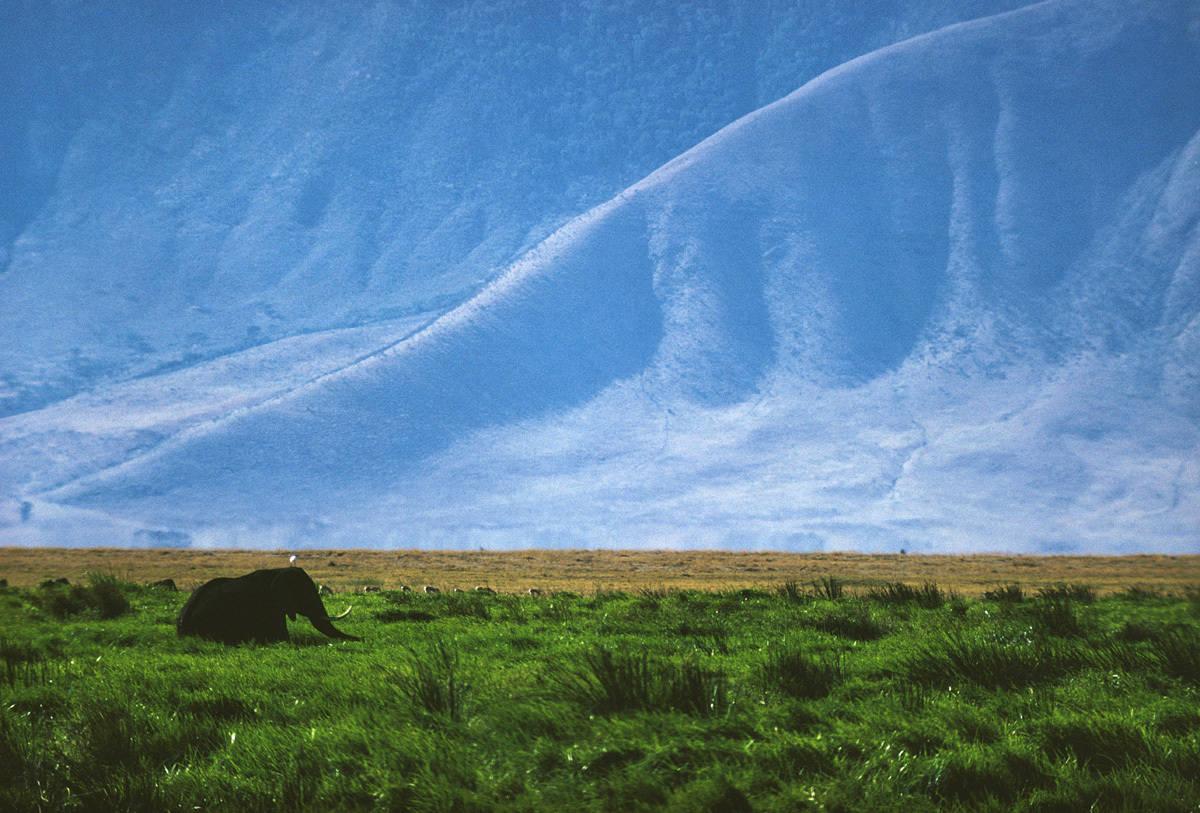 Ernst Haas, The Creation, Kenya, 1970.