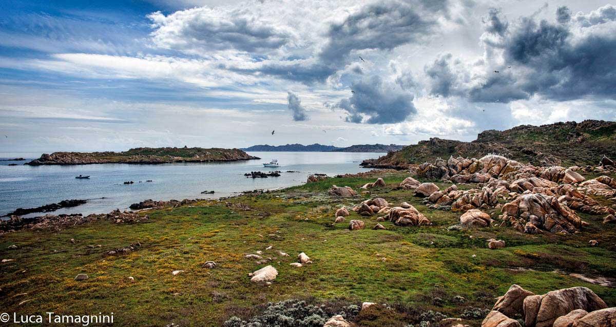 La Maddalena, l'arcipelago della Sardegna del nord: la rada tra l'Isola di Corcelli e l'Isola Piana. Foto di Luca Tamagnini