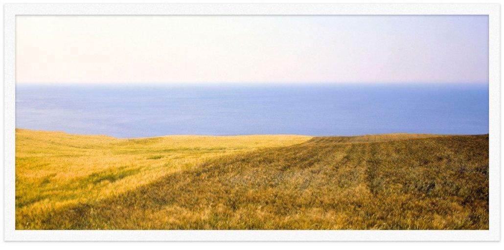 Portonovo-Monte-Conero-110x50-cm-foto-di-Luca-Tamagnini. Campi di grano sul mare