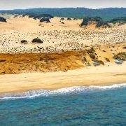 Sardegna, Spiaggia e Dune di Piscinas dal cielo (foto aerea) / Luca Tamagnini Catalogo 1992-019