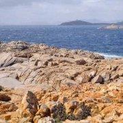 Sardegna, scogliere basse sotto Capo Spartivento sullo sfondo il mare increspato / Luca Tamagnini Catalogo 1992-030