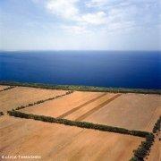 Sardegna, Santa Caterina di Pittinuri Campi coltivati sul mare dal cielo (foto aerea) / Luca Tamagnini Catalogo 2000-003