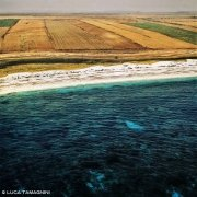 Sardegna, Penisola del Sinis Spiaggia di Mari Ermi dal cielo (foto aerea) / Luca Tamagnini Catalogo 2001-001
