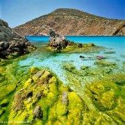 Isola dell'Asinara Cala Sgombro di Fuori / Luca Tamagnini Catalogo 2002-014