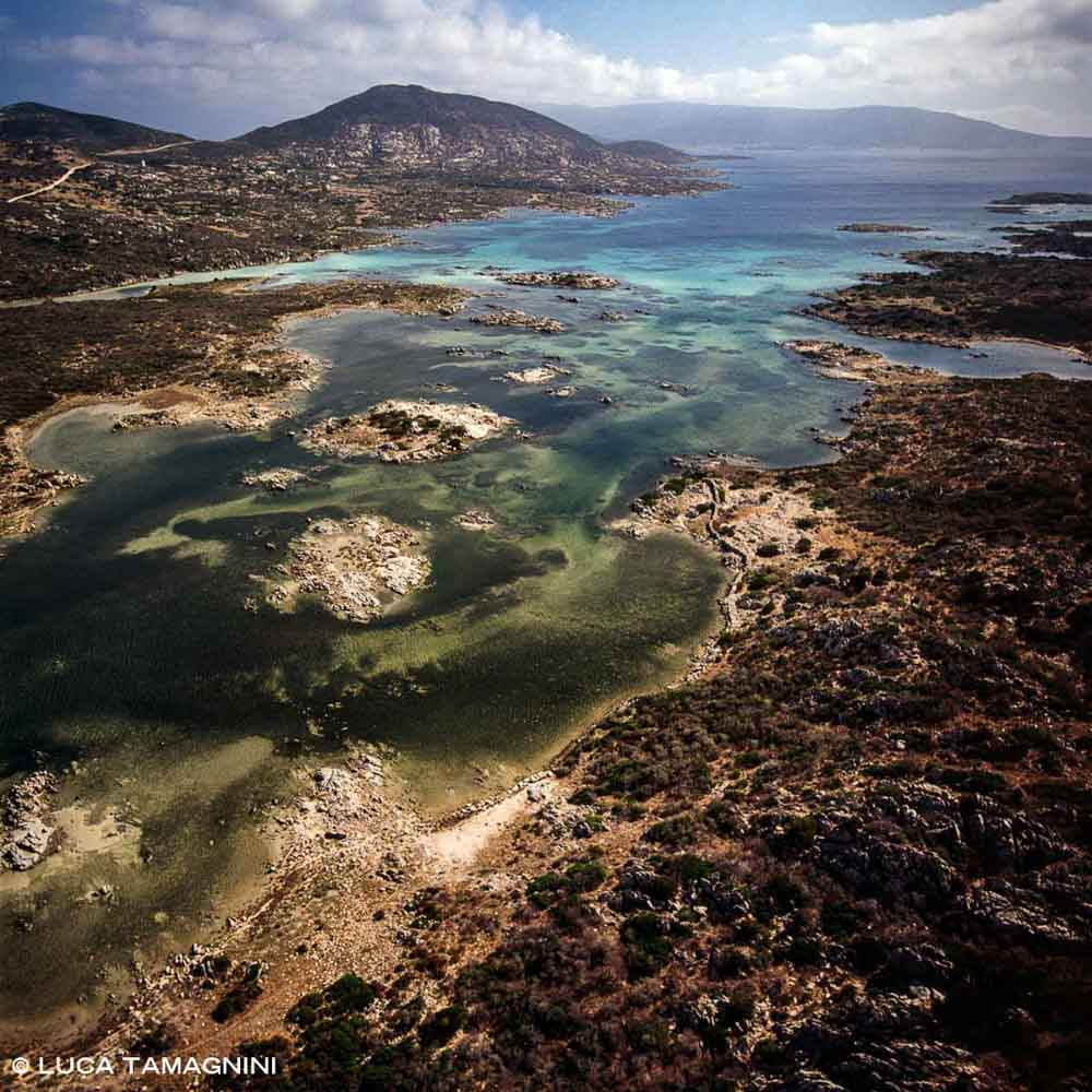 Isola dell'Asinara Cala Sgombro di Dentro dal cielo / Luca Tamagnini Catalogo 2002-015
