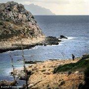 Foto Mare Sicilia. Isole Egadi, Isola di Levanzo asinello a Cala Faraglione