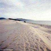 Sardegna, Dune di Porto Pino con una figura lontana di giovane bagnate sullo sfondo la spiaggia e il mare / Luca Tamagnini Catalogo 2008-009B