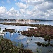 Sardegna, Isola di Sant'Antioco Laguna e mare interno con lontani raccoglitori di frutti di mari sullo sfondo il paese di Sant'Antioco / Luca Tamagnini Catalogo 2009-032