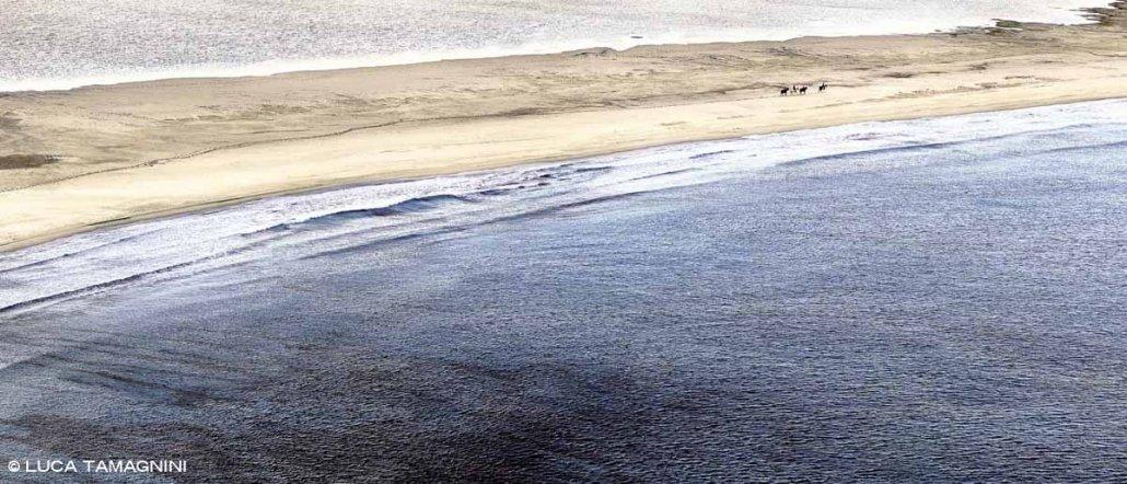 Sardegna, Villasimius cavalli con cavalieri sulla Spiaggia Timi Ama e il mare di Porto Giunco sullo sfondo lo Stagno di Notteri
