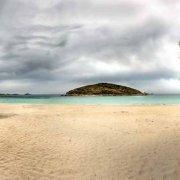 Sardegna, Spiaggia di Tuerredda senza nessun bagnante con un albero di mimosa e sullo sfondo il mare e l'Isola di Tuerredda / Luca Tamagnini Catalogo 2010-007