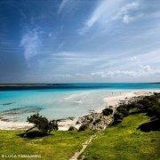 Sardegna, Stintino, Spiaggia della Pelosa deserta senza bagnanti / Luca Tamagnini Catalogo 2010-022