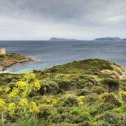 Sardegna, Torre Piscinni sullo sfondo il mare e la costa di Capo Teulada / Luca Tamagnini Catalogo 2010-029