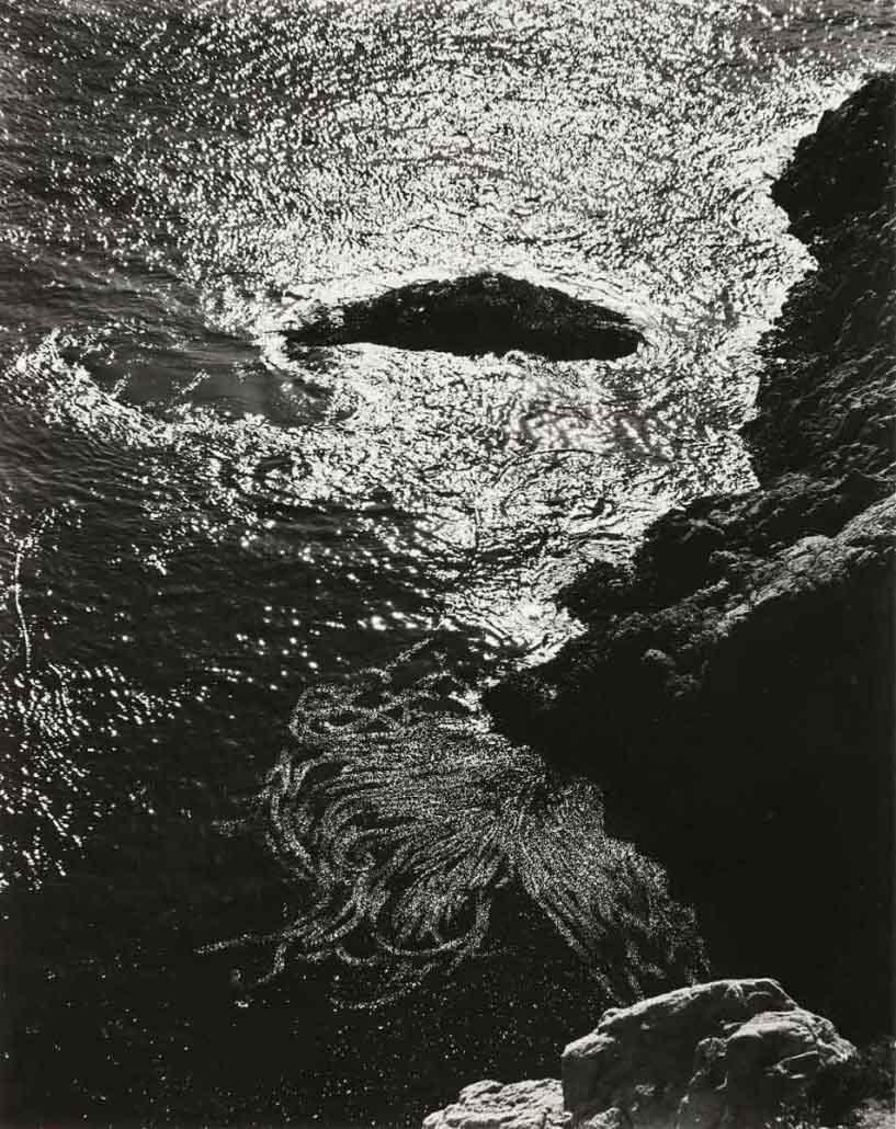 Paesaggio marino di Edward Weston - Point Lobos, 1940