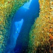 Foto Alghero / Area Marina Protetta di Capo Caccia - Isola Piana / Foto Subacquee di Luca Tamagnini Fuori Catalogo / Grotta di Nereo I Portici con subacquei