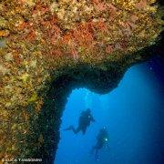 Foto Alghero / Area Marina Protetta di Capo Caccia - Isola Piana / Foto Subacquee di Luca Tamagnini Fuori Catalogo / Grotta di Nereo corallo rosso