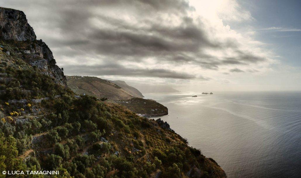 Nerano (Massa Lubrense) sul sentiero per Ieranto (FAI), sullo sfondo le Isole Li Galli / Luca Tamagnini Catalogo 2021-017