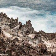 Foto Mare Sardegna / Isola di San Pietro, 2021, Scogliere di Nasca / Luca Tamagnini Catalogo 2021-031